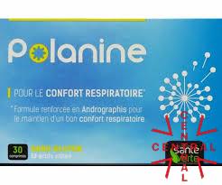 POLANINE confort respiratorio 30 comp sante verte