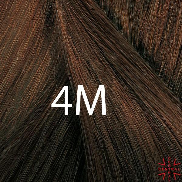 PHYTO COLOR 4M castaño claro marrón